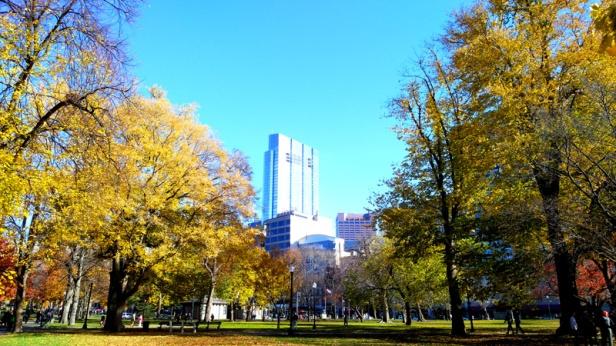 park-boston